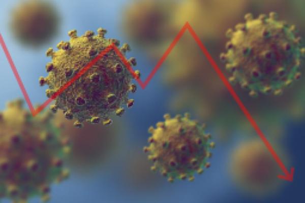 Die Börsen und das Corona-Virus
