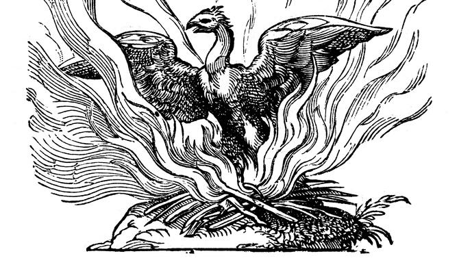 Die Capitell-Aktienmaerkte-Wie-Phönix-aus-der-Asche